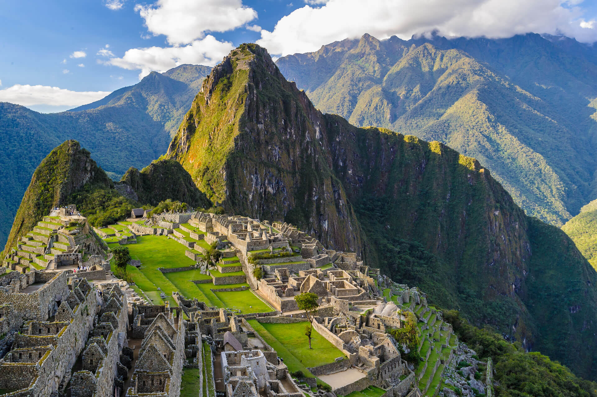 PERU LOW
